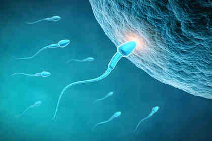 Italia al 12esimo posto in tema di sesso e contraccezione