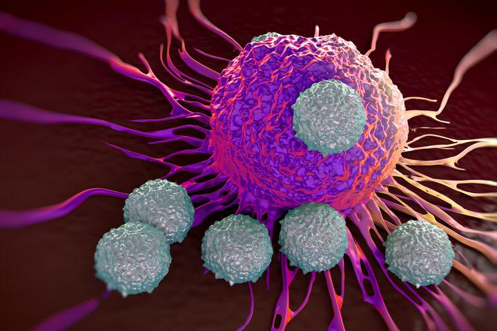 Il tumore del polmone si batte anche con l'immunoterapia