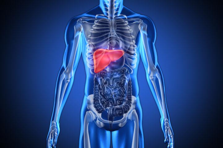 Tumore del fegato