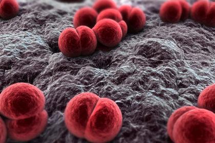 Meningite: la prevenzione passa dal vaccino