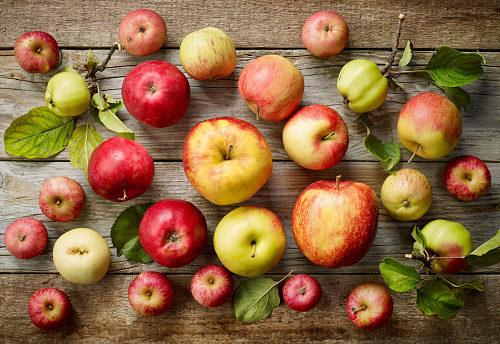 Così gli antiossidanti delle mele contrastano il tumore del colon-retto