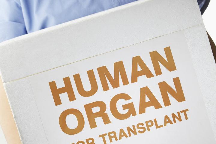 Come funzionano le liste d'attesa per un trapianto d'organo?