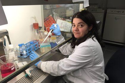 Studio come il cancro spegne il sistema immunitario