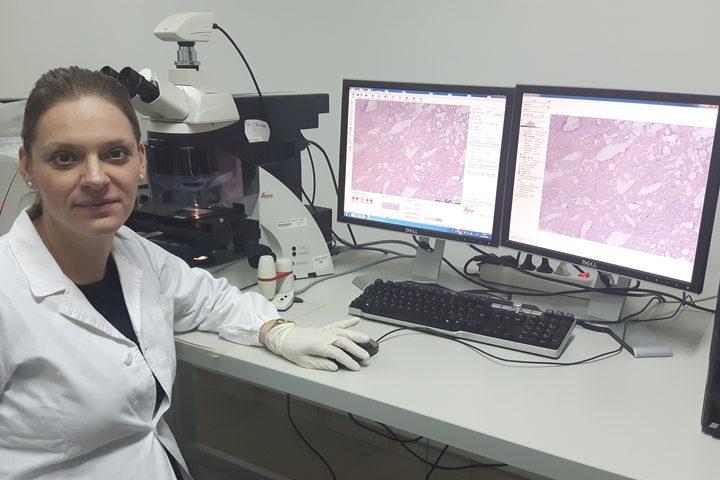 Una potenziale strategia per combattere il tumore del fegato