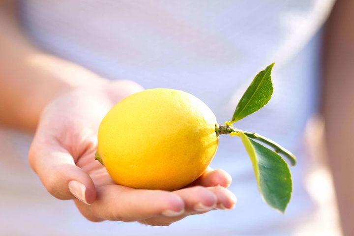 Del limone è la scorza la parte più benefica