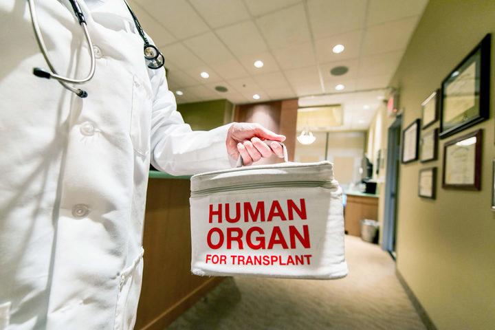 Trapianto di fegato: donatori anche a 90 anni