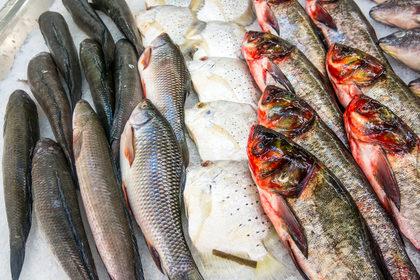 Ecco come riconoscere il pesce fresco da quello congelato