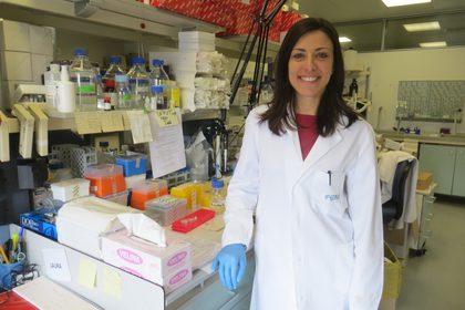 Decifrare il codice molecolare dei linfomi
