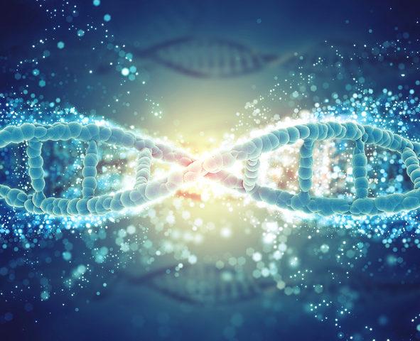 Cosa significa avere mutazioni nei geni Brca 1/2?