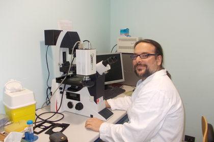 Metastasi: non sempre opera di una singola cellula