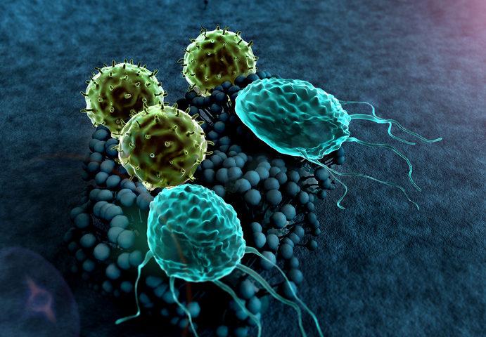 Tumori: identificato nuovo bersaglio per migliorare l'immunoterapia