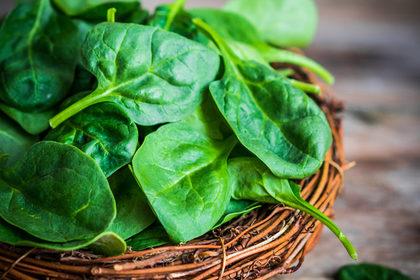 Alimentazione e prevenzione con Fondazione Veronesi e Giro d'Italia: verdure a foglia verde