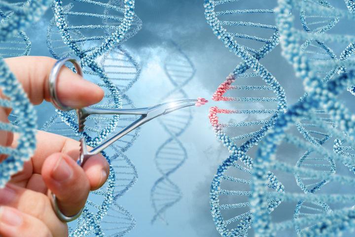 Terapia genica: inizia l'era del «gene editing» direttamente nell'uomo