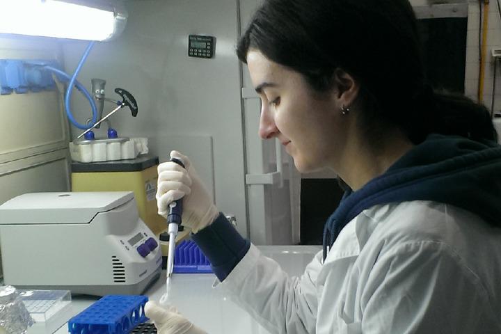 Autismo: un possibile aiuto dai probiotici?