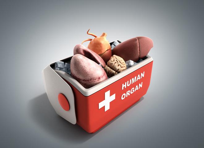 In cosa consiste un trapianto d'organo?
