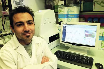 Punto a scoprire come cambia il metabolismo nel tumore del rene