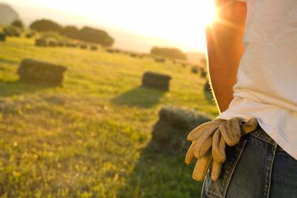 Tumori della pelle e radiazioni solari: i lavoratori all'aperto rischiano di più