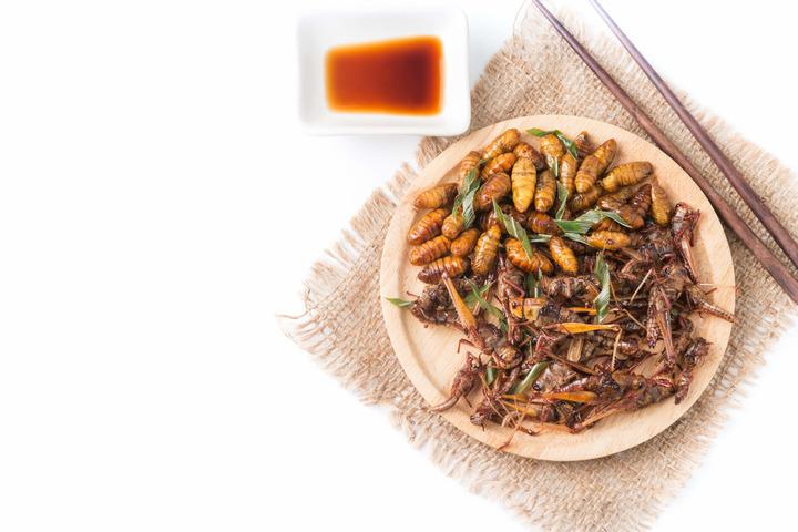 insetti commestibili: cibo del futuro? | fondazione umberto veronesi