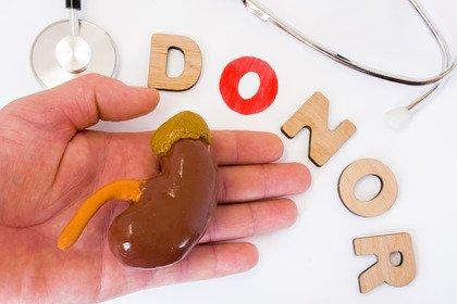 Trapianti di rene a buon fine se l'organo è di una persona con l'HCV