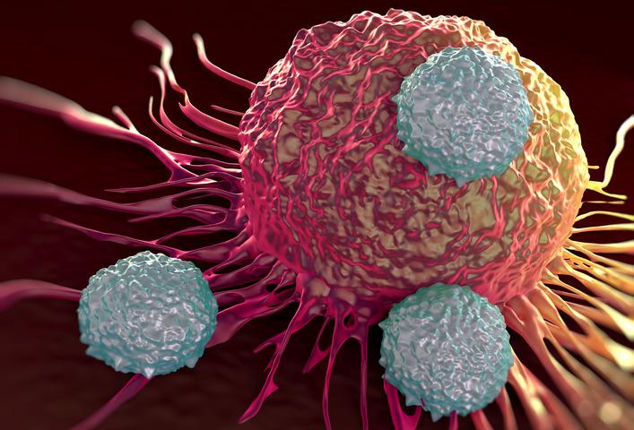 Perché l'immunoterapia contro il cancro vale un Nobel