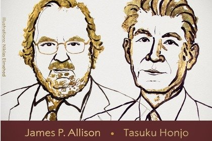 Il Nobel per la Medicina 2018 all'immunoterapia contro il cancro