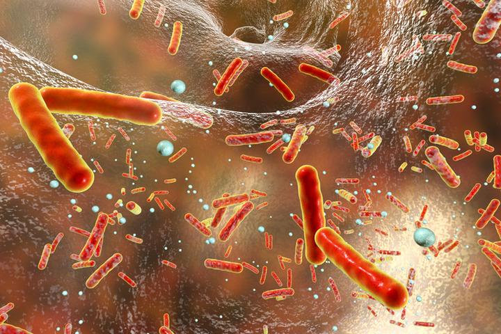 In Europa la resistenza agli antibiotici provoca 33mila morti all'anno
