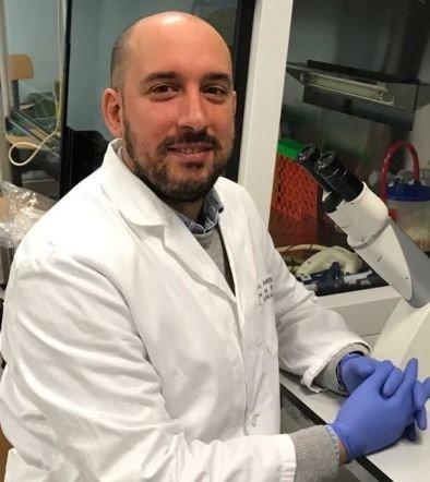 Studio il sistema immunitario per migliorare la lotta ai tumori