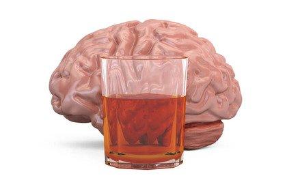 Alcol: il danno cerebrale prosegue anche quando si smette di bere
