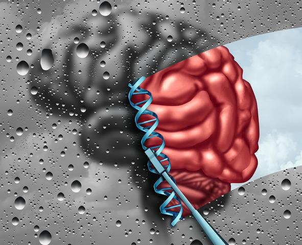 Scoperto il recettore che può far «scatenare» l'Alzheimer