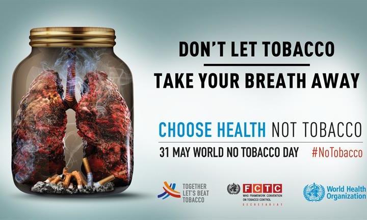 Fumo e polmoni: sappiamo quali sono i danni?