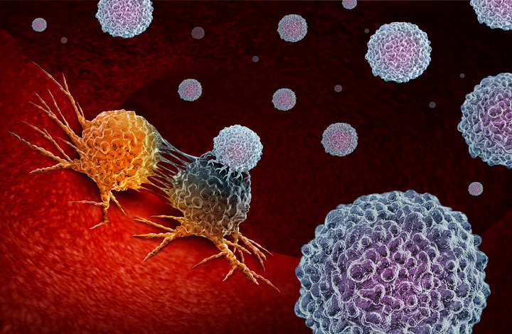 «Preparare» il tumore per batterlo con l'immunoterapia