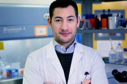 «Fotografo» il sistema immunitario per battere i tumori del fegato