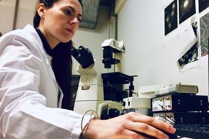 Tumore al testicolo: il possibile ruolo delle fosfodiesterasi