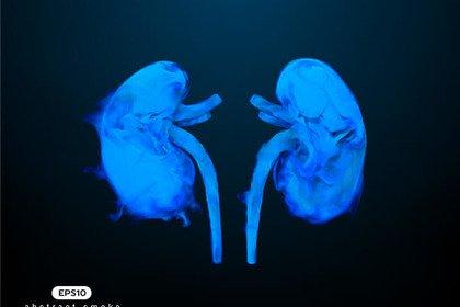 Il fumo può influire sulla salute dei reni?