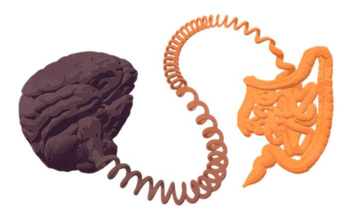 Il Parkinson nasce nell'intestino?