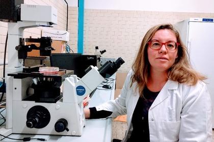 Nanoplastiche: un potenziale rischio per le cellule ossee?
