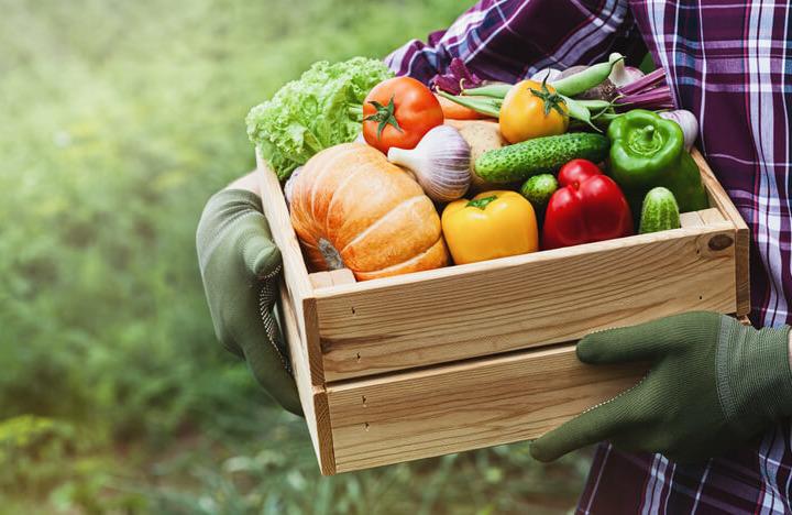 La qualità della dieta non (sempre) migliora con i cibi biologici