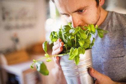 Covid-19: quanto dura la perdita di olfatto e di gusto?