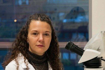 «Mini-cervelli» in provetta per studiare l'epilessia infantile