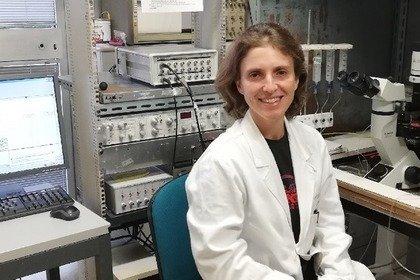 Studio il ruolo degli oligodendrociti nella sclerosi multipla