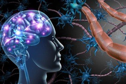 Sclerosi multipla: il ruolo dell'infezione da virus di Epstein-Barr