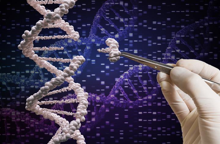 Amiloidosi ATTR: una cura grazie alla terapia genica con Crispr-Cas9