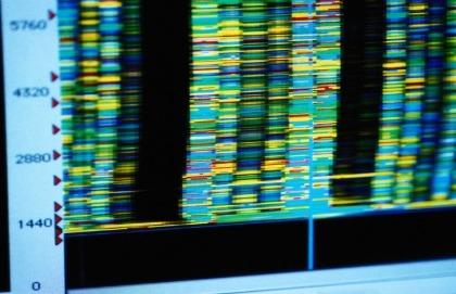 Mutazioni genetiche: non sempre sono dannose