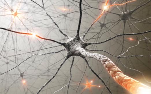 Sclerosi multipla: dagli anticorpi una possibile soluzione