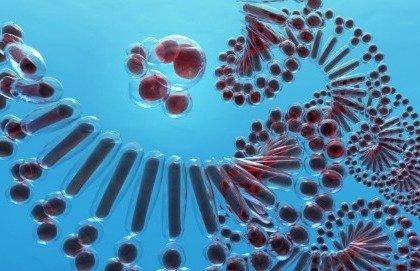 """La biopsia """"liquida"""" scopre i tumori con l'analisi del sangue"""