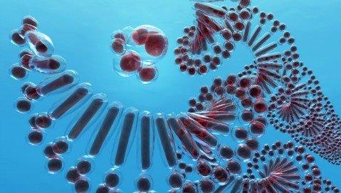 La biopsia liquida scopre i tumori con l'analisi del sangue