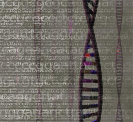 Terapia genica: la storia di un successo italiano