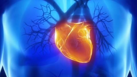 L'elettrocardiogramma che non sbaglia un colpo
