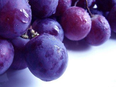 Antiossidanti: le sentinelle della nostra salute