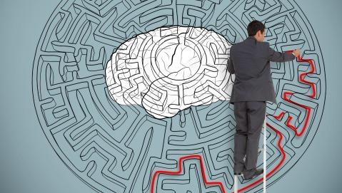 Per capire il cervello cominciamo a studiare i sistemi semplici